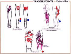 Knee Pain | GadiBody.com | Neuromuscular Therapy - Strain Counterstrain Pain Relief - Los Angeles, Santa Monica CA