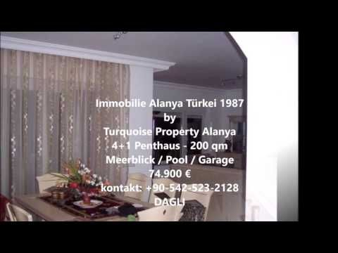 Property 1987 by Turquoise Property
