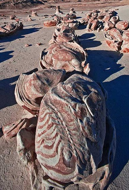 'Cracked Eggs area of the Bisti Badlands' - photo by Paul Gill (paulgillphoto), via Flckr;  The Bisti/De-Na-Zin Wilderness is a wilderness area located near Farmington in San Juan County, New Mexico.  The Bisti Egg Garden is an area of unusual rock formations containing a combination of different types of sedimentary rocks with varying hardness.