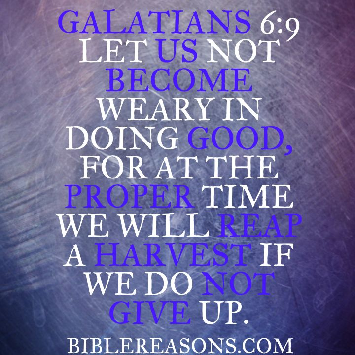Bible Quotes Never Give Up: 35 Best Images About Bible Quotes On Pinterest