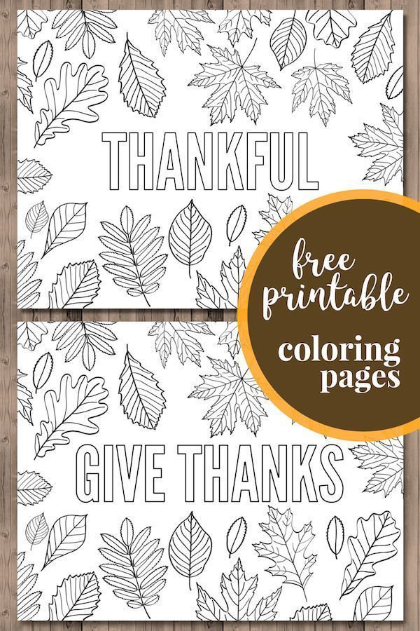 Thanksgiving Coloring Pages Free Printable Paper Trail Design Thanksgiving Coloring Pages Free Thanksgiving Printables Free Thanksgiving Coloring Pages