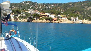 SALIDAS EN BUSCA DE DELFINES Y AVES MARINAS!! - Sailing Costa Brava!!! (Palamós) - Meetup