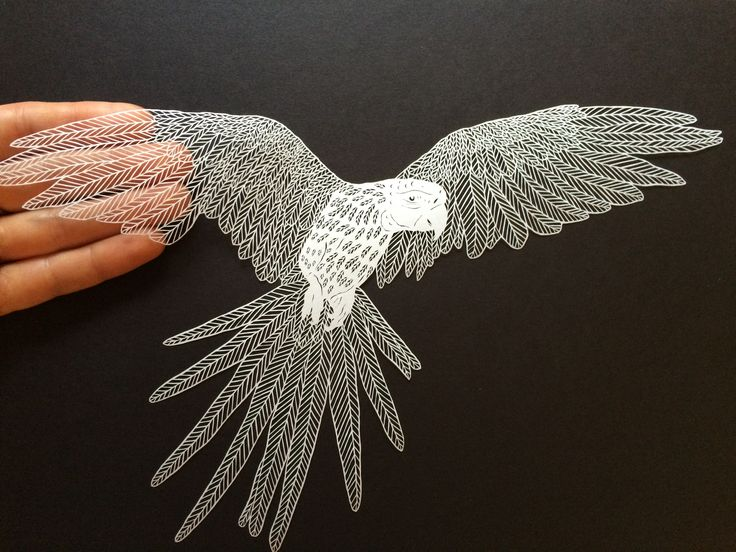 Best Paper Cutting Images On Pinterest Drawing Freedom And - Intricate hand cut paper art maude white