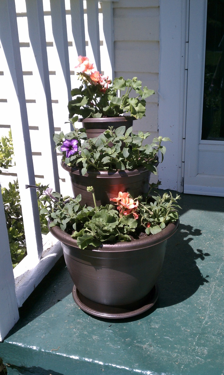 39 best porch plants images on pinterest flowers garden garden deco and landscaping. Black Bedroom Furniture Sets. Home Design Ideas