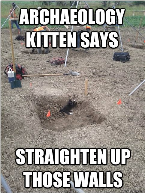 e213c52e16c9b27353c7bbc835a95f0b quick meme cat love 29 best funny archaeology images on pinterest archaeology, books