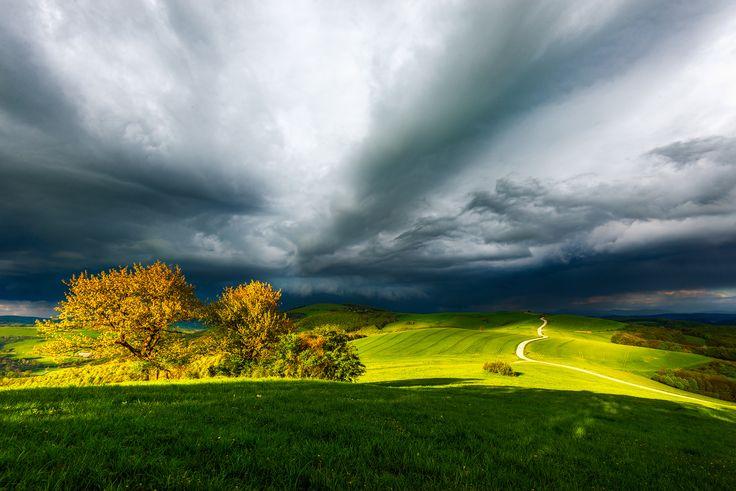 Fields in South Moravia, Czech Republic.
