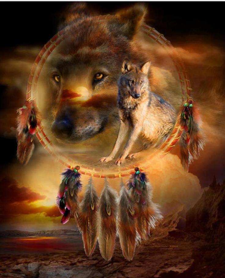 wolf: Native American Art, Native American Indian, Dreams Catcher, Art Prints, Native American Wolf, Paintings, Two Wolves, Animal, Eye