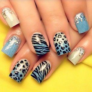 Leopard & Zebra