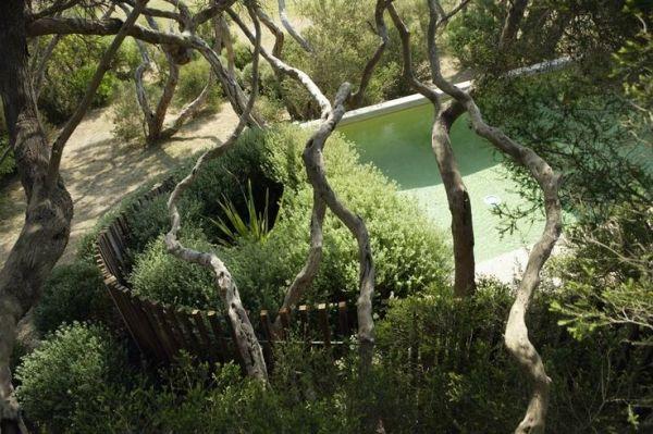 Love the circular fence line. Fiona Brockhoff garden - Sorrento by proteamundi