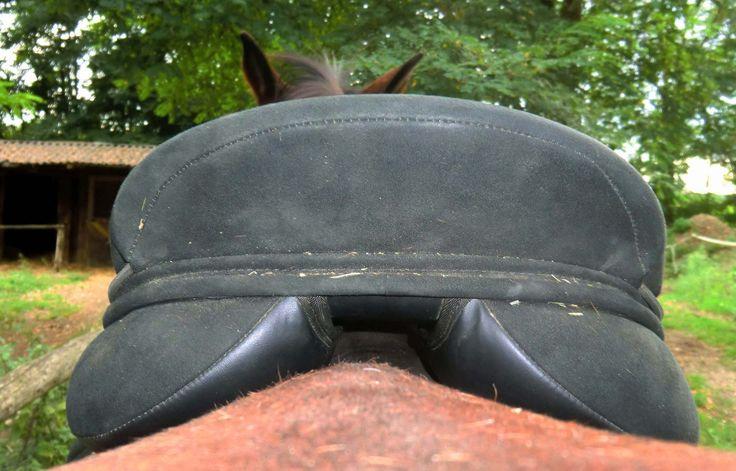 Checklist pour vérifier si ma selle est adaptée au dos du cheval