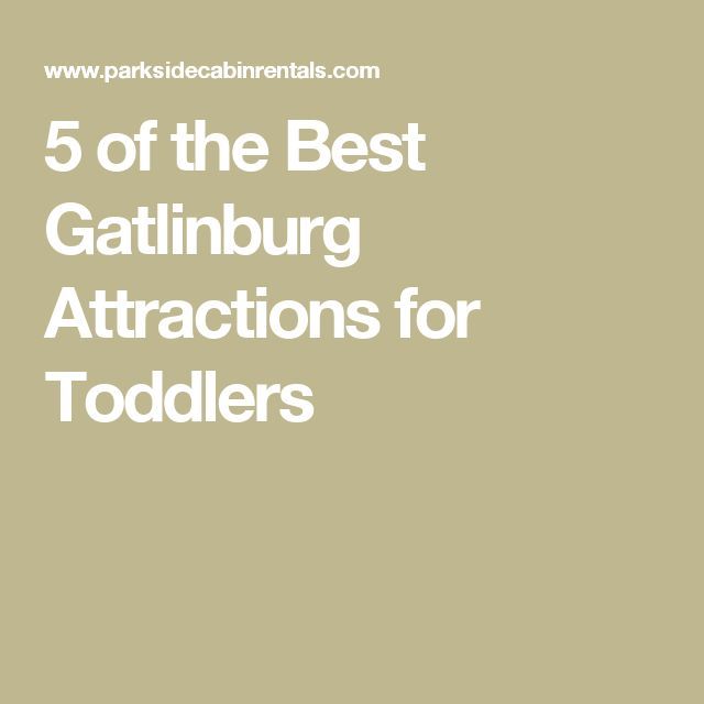 5 of the Best Gatlinburg Attractions for Toddlers