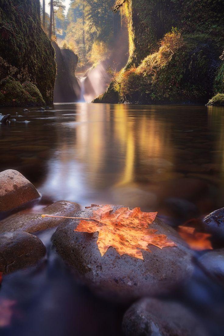 Punch Bowl Falls, Eagle Creek, Columbia River Gorge, Bonneville, Oregon, USA