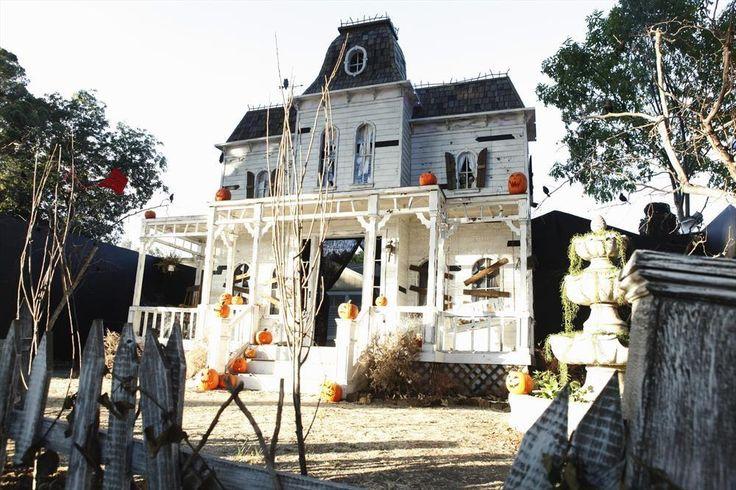 halloween haunt great america jobs