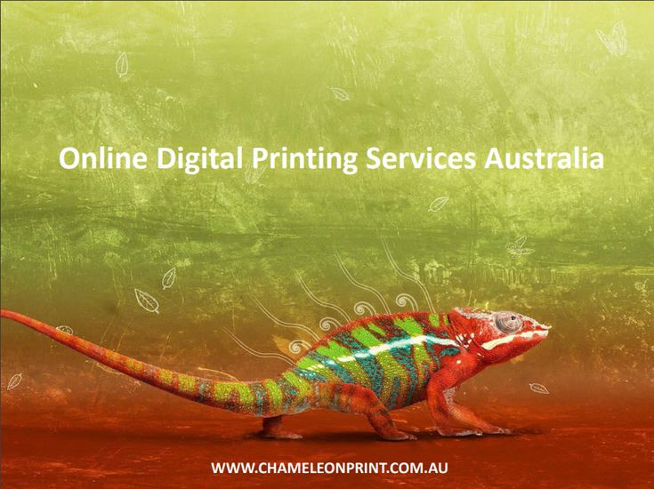 We specialise in inspired and Online Digital Printing Services Australia. It's no secret that great design sells, and we can help transform your business and engage your customers. Our design team will work with you to effectively showcase your products and services.