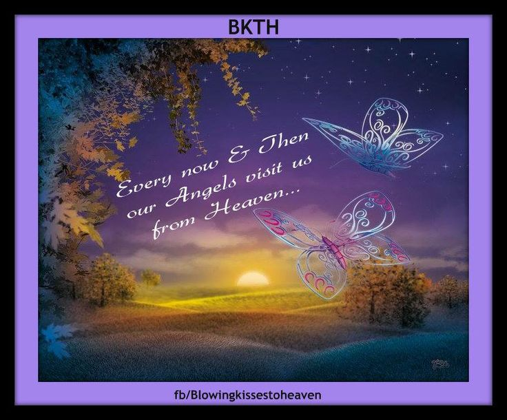 butterfly heaven wallpaper - photo #43