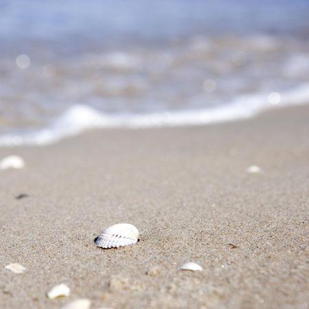 #beach #summer #hornbaek