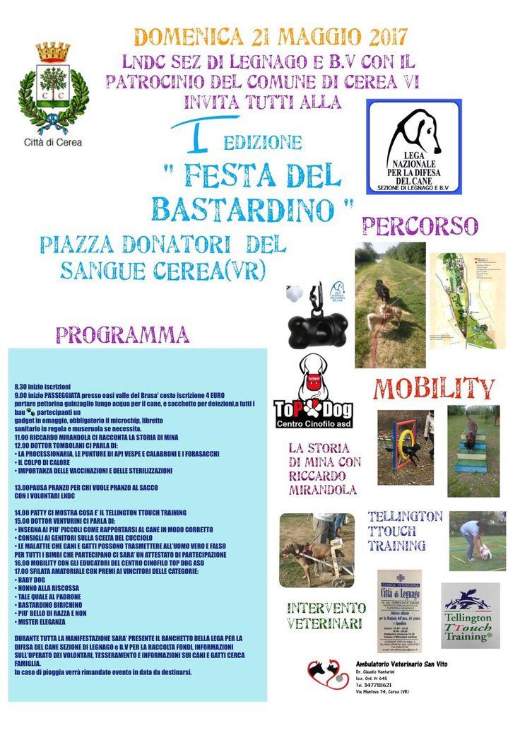 21/5 Festa del Bastardino organizzata dai #volontari della #LNDC di #Legnago con il patrocinio del Comune di #Cerea (VR)