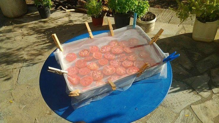Λιαστές ντομάτες από τα χεράκια μας !!