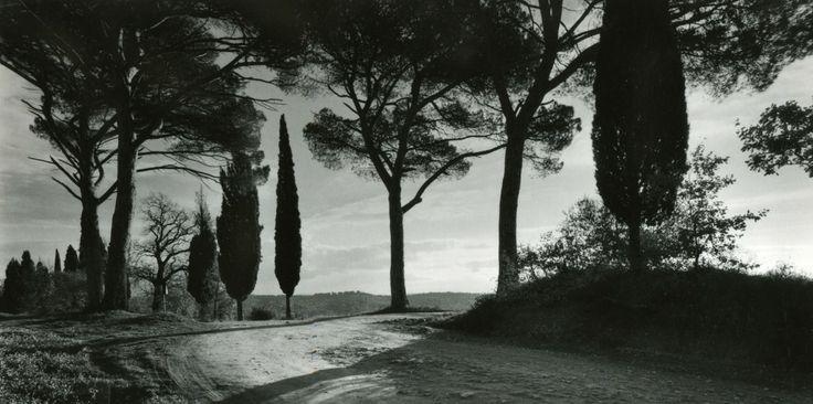 #Maremma, #Tuscany, #Italy