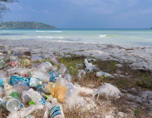 Henderson Island is covered by nearly 20 tons of plastic—the highest density of anthropogenic debris recorded anywhere on Earth. One of the world's most remote places, an uninhabited coral atoll, is also one of its most polluted.Henderson Island, a tiny landmass in the eastern South Pacific, has been found by marine scientists to have the highest density of anthropogenic debris recorded anywhere in the world, with 99.8% of the pollution plastic.The nearly 18 tonnes of plastic piling up on an…