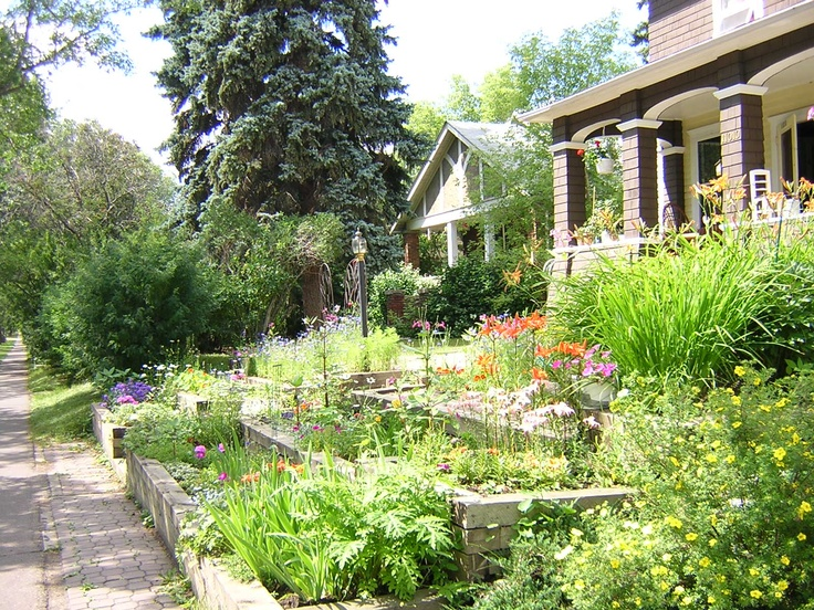 Daily summer walks - Almost an old fashioned English garden. Love it!