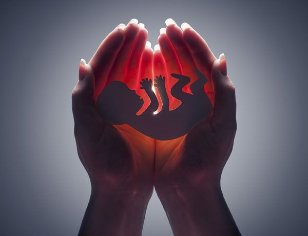 Causas del aborto espontáneo: http://todosobreembarazo.com/causas-del-aborto-espontaneo-y-como-prevenirlo/