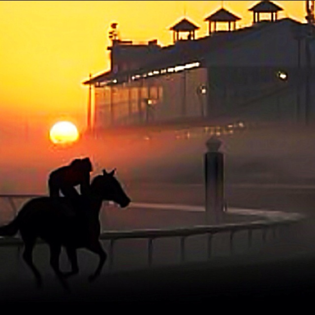 Fairgrounds racetrack morning workout