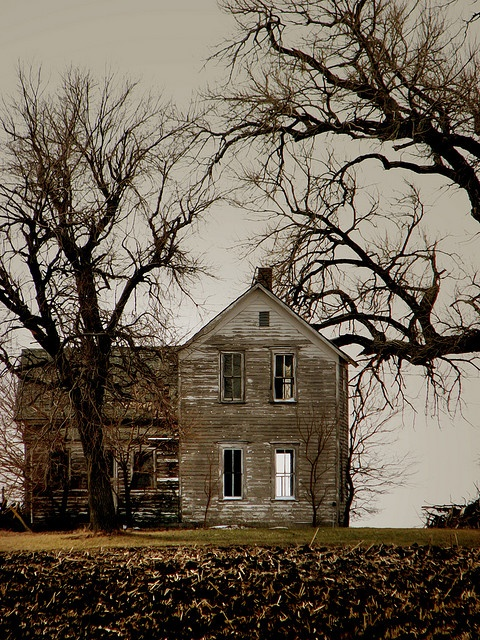 Rustic Old houses: Rustic House, Old House, Farms House, Old Farmhouse, Abandoned Home, Haunted House, Children, Rural Living, Abandoned House