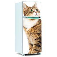 Adesivo de Geladeira Inteira - Gato / Gatinho