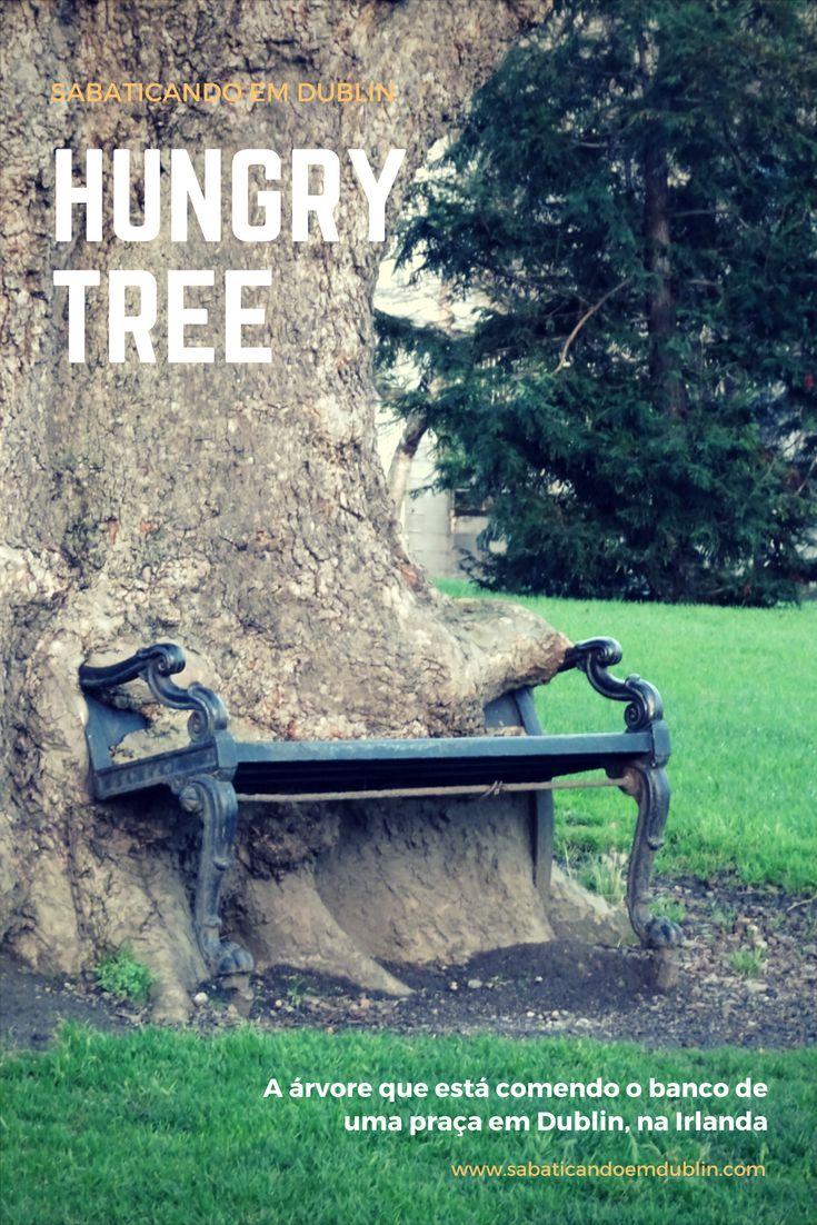 Hungry Tree Dublin - a árvore que está comendo o banco de uma praça em Dublin, Irlanda. Saiba mais em: www.sabaticandoemdublin.con