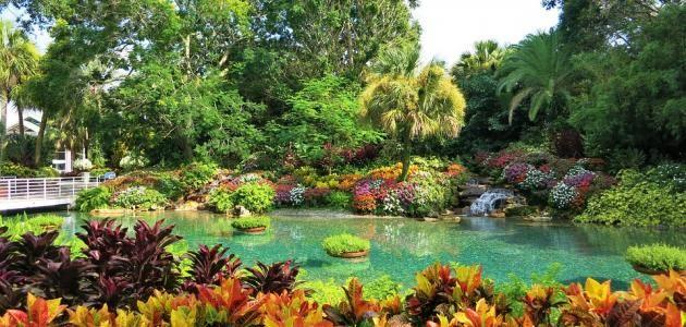 e21883573149b04ac8b6bd5a72fddbed - Busch Gardens Tampa Bay Annual Pass