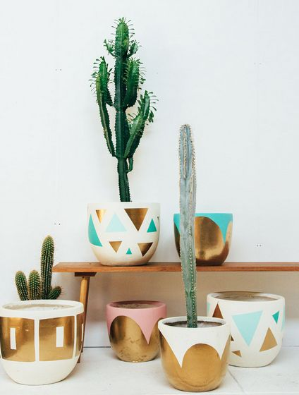 Cute little cacti in even cuter little graphic pots.