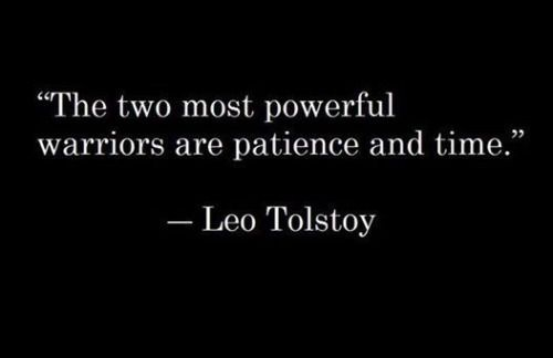 The two most powerful warriors are patience and time. Leo Tolstoy.
