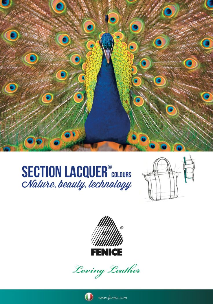Section Lacquer® // Specialities used in the finishing of leather edges for high quality leathergoods.