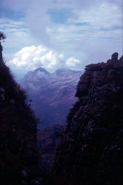 Chimanimani Mountains - Google Search - image: chimanimani.rhodesiana