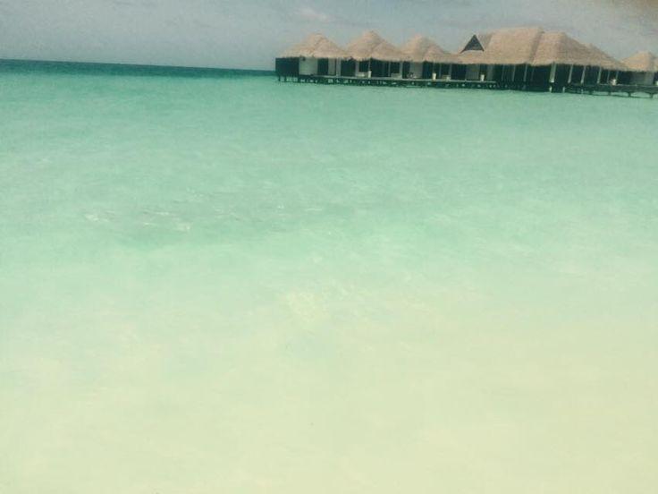 Μαλδίβες... Maldives