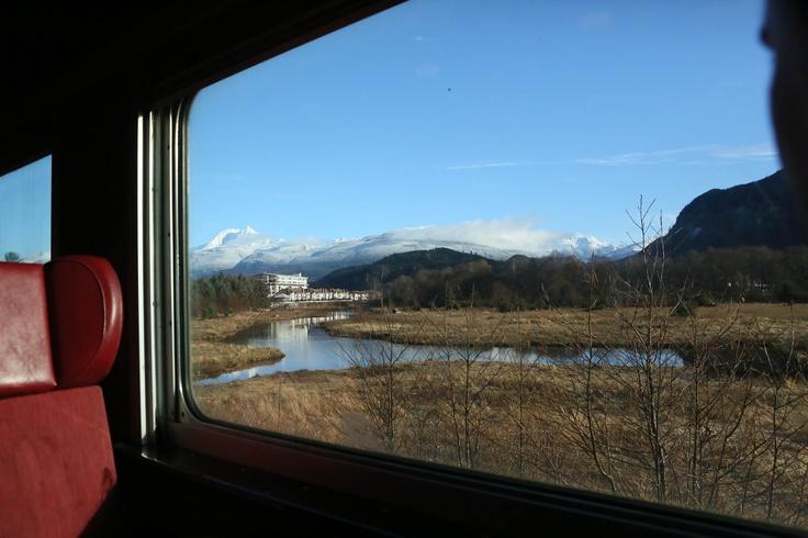 A view from the train ride of 'Polar Express 2012' Thank you Monique Napier Photography