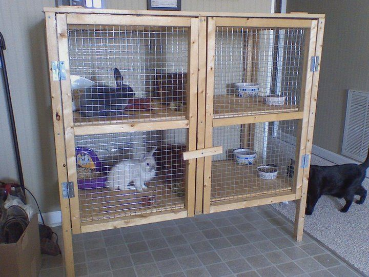 Rabbit hutch ideas hives coops pinterest for What is a rabbit hutch