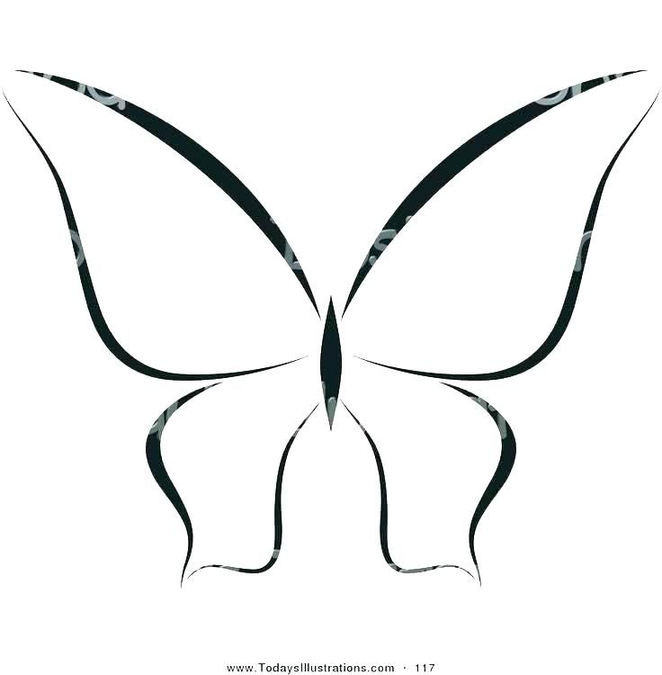How To Make A Flying Butterfly Card Butterfly Outline Butterfly Drawing Outline Butterfly Drawing
