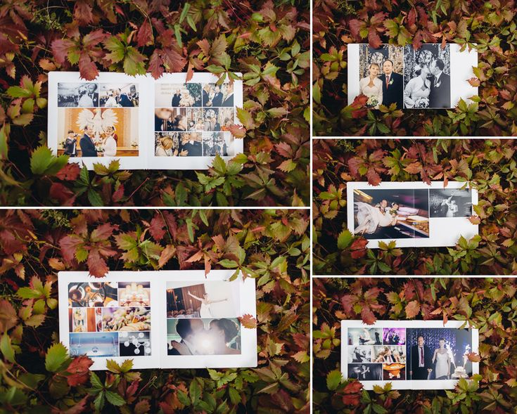 fotoalbum slubny fotoreportaż
