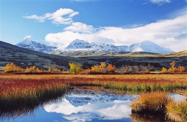 Fall Foliage in Scandinavia: Rondane National Park in Norway