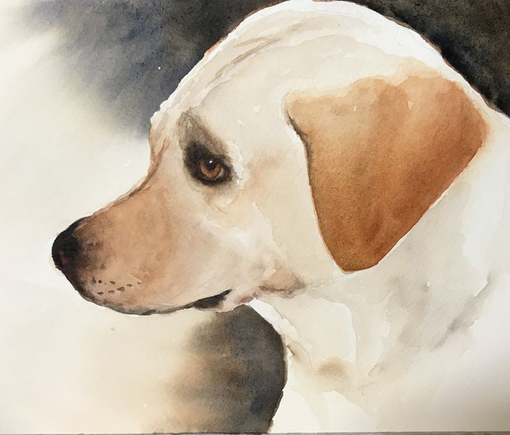 Maddy - watercolour by Nicole Wilkinson