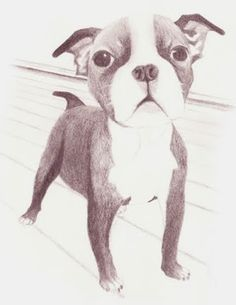 Image result for easy pencil drawings for beginners