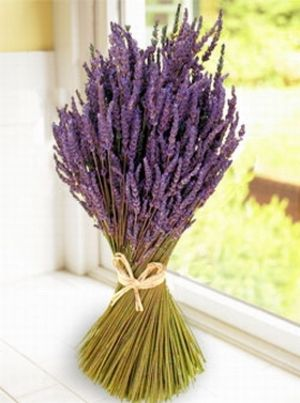 lavender bundle - wedding centerpieces ?
