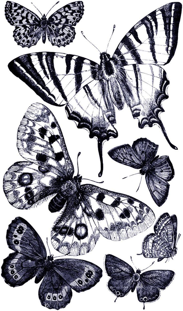 **FREE ViNTaGE DiGiTaL STaMPS**: Free Vintage Digital Stamp – ButterfliesSandra Anis-Opperman