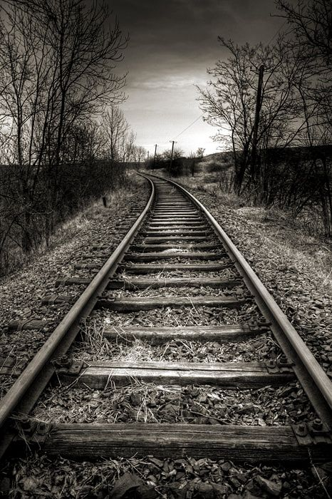 Tracks, hay, steel, curvature, weathered, silent, never ending