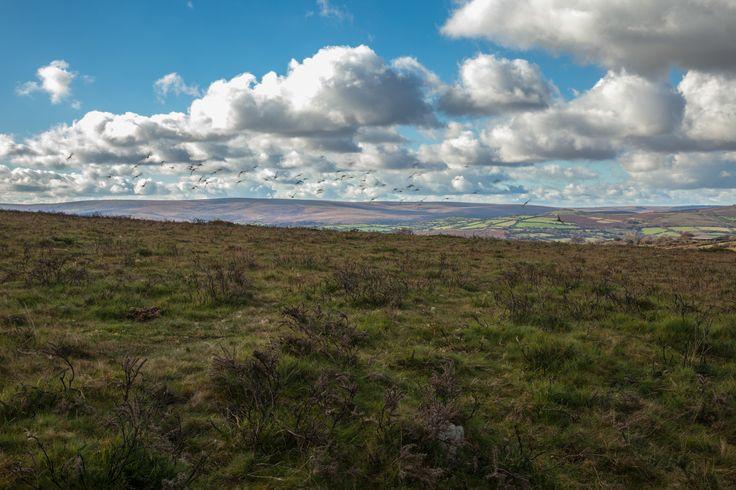 View of the Moors Devon