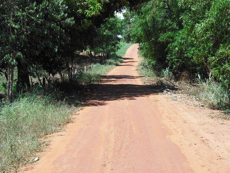 Estrada 14