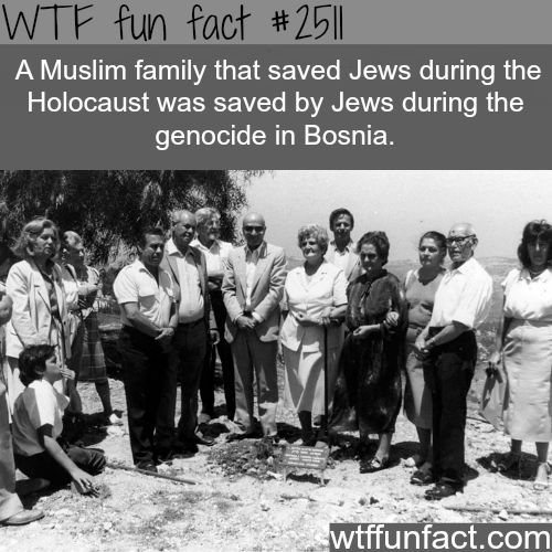 Muslim family saves Jews, then Jews saved muslim family - WTF fun facts