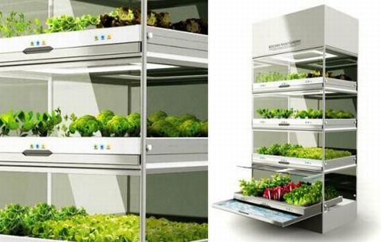 hyundai kitchen: nano garden uses hydroponic technique to grow food.